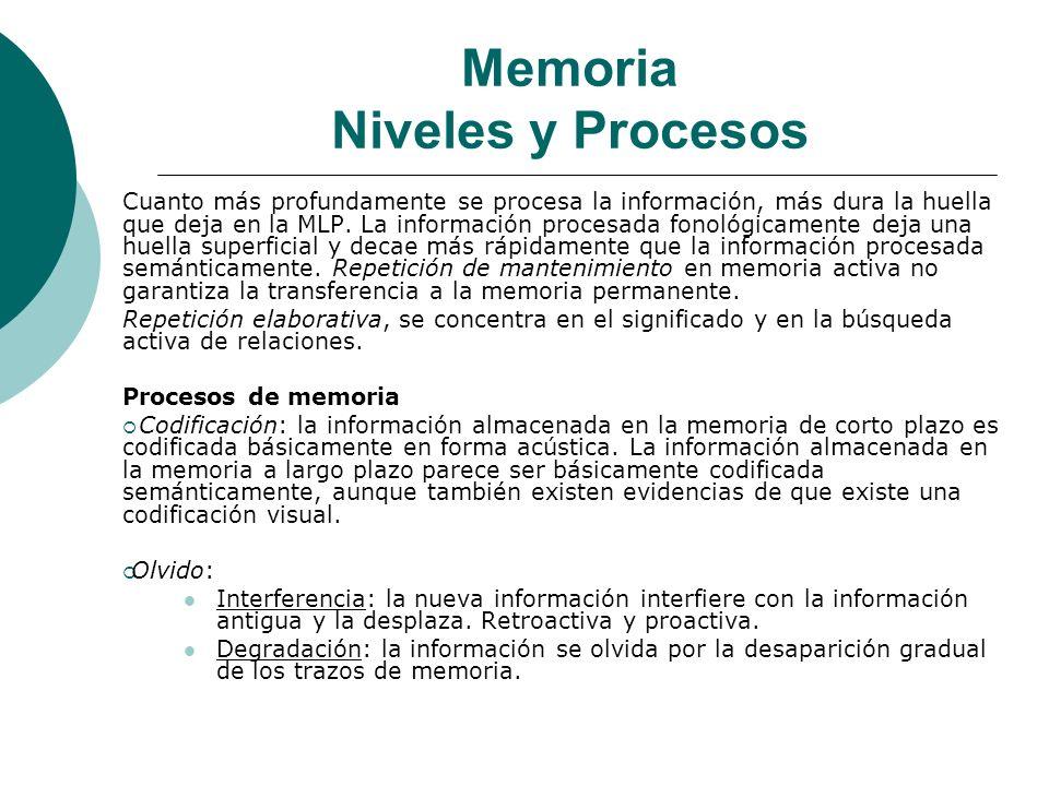 Memoria Niveles y Procesos
