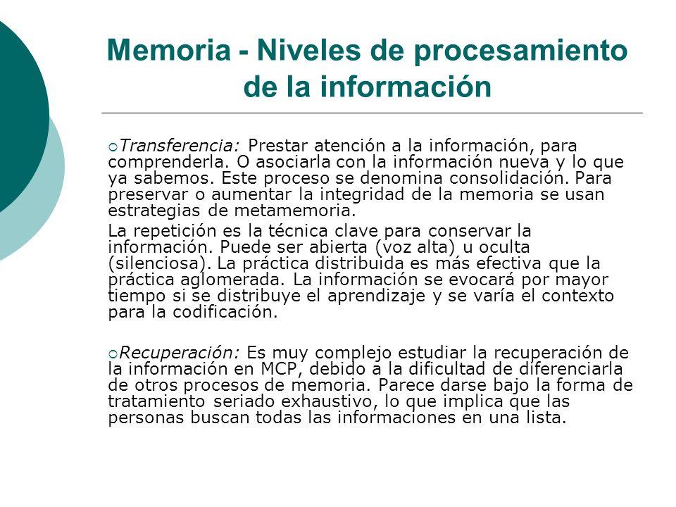 Memoria - Niveles de procesamiento de la información