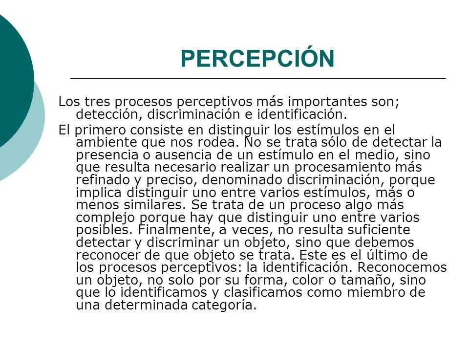 PERCEPCIÓN Los tres procesos perceptivos más importantes son; detección, discriminación e identificación.