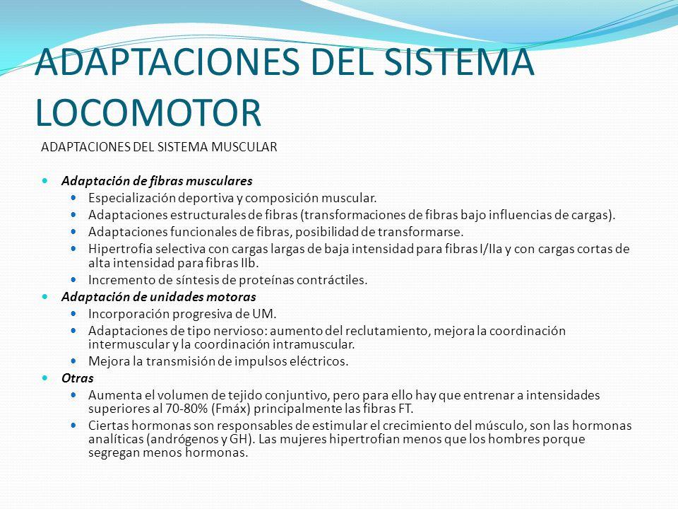 ADAPTACIONES DEL SISTEMA LOCOMOTOR
