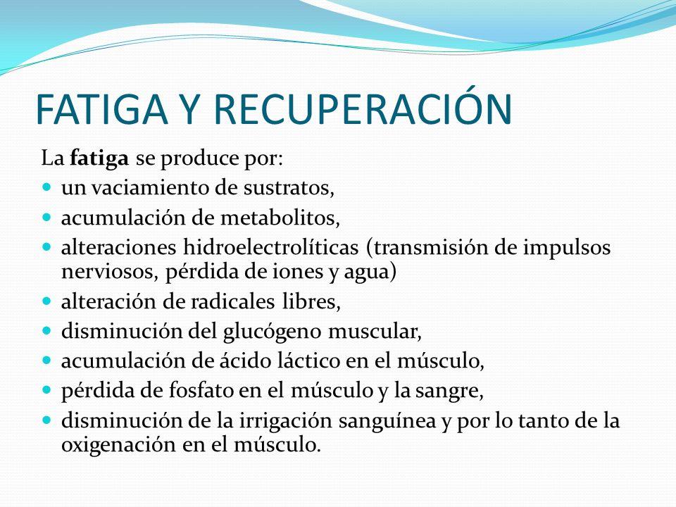 FATIGA Y RECUPERACIÓN La fatiga se produce por: