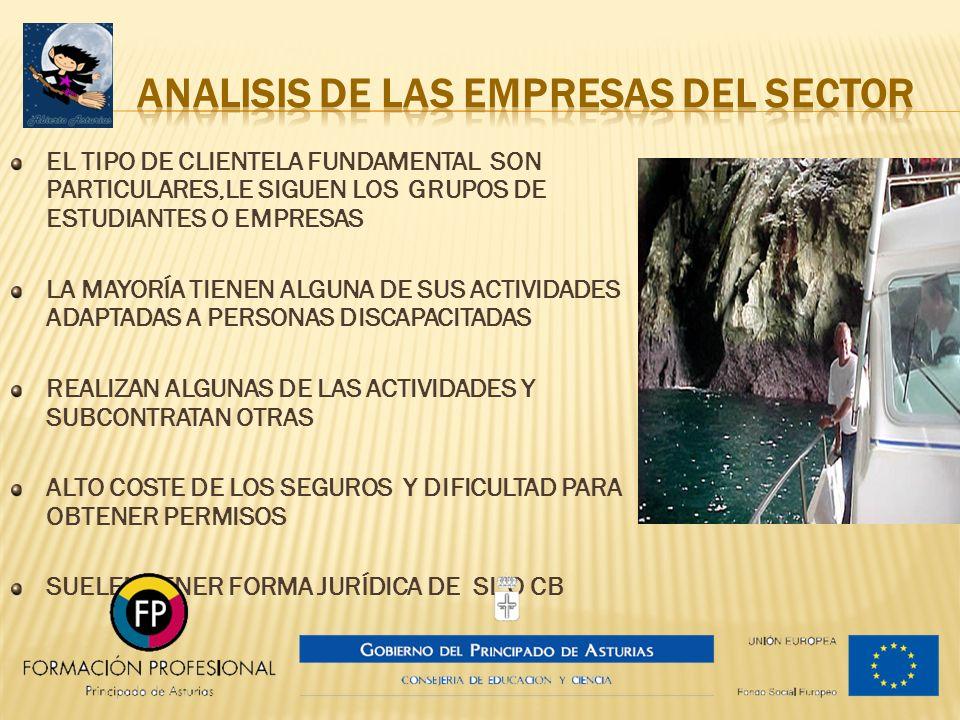 ANALISIS DE LAS EMPRESAS DEL SECTOR