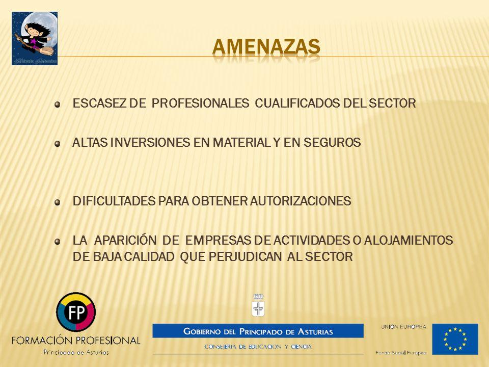 AMENAZAS ESCASEZ DE PROFESIONALES CUALIFICADOS DEL SECTOR