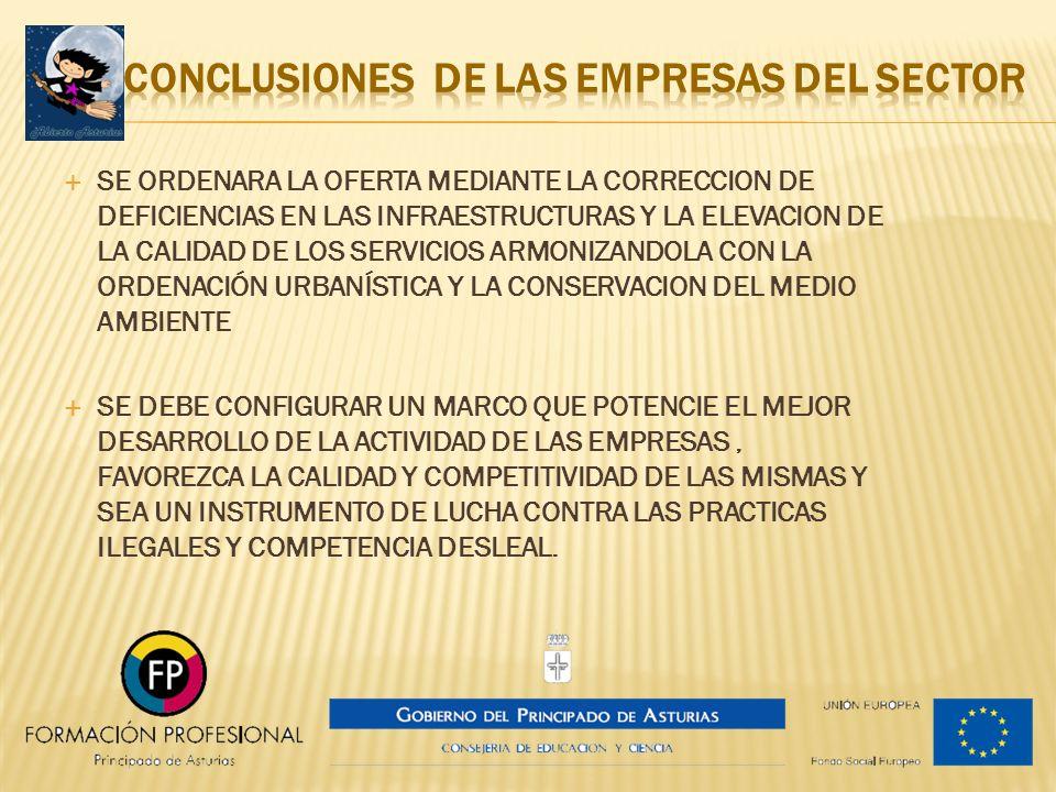CONCLUSIONES DE LAS EMPRESAS DEL SECTOR