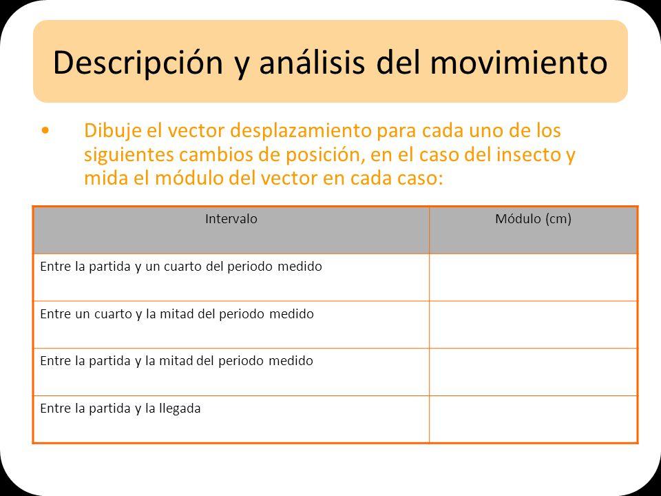 Descripción y análisis del movimiento