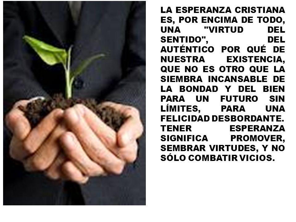 LA ESPERANZA CRISTIANA ES, POR ENCIMA DE TODO, UNA VIRTUD DEL SENTIDO , DEL AUTÉNTICO POR QUÉ DE NUESTRA EXISTENCIA, QUE NO ES OTRO QUE LA SIEMBRA INCANSABLE DE LA BONDAD Y DEL BIEN PARA UN FUTURO SIN LÍMITES, PARA UNA FELICIDAD DESBORDANTE.