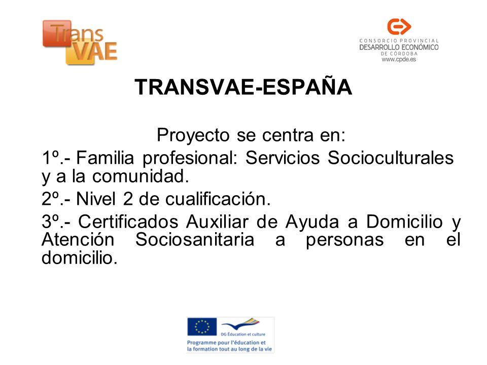 TRANSVAE-ESPAÑA Proyecto se centra en: