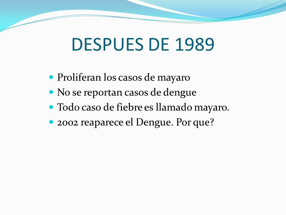 DESPUES DE 1989 Proliferan los casos de mayaro