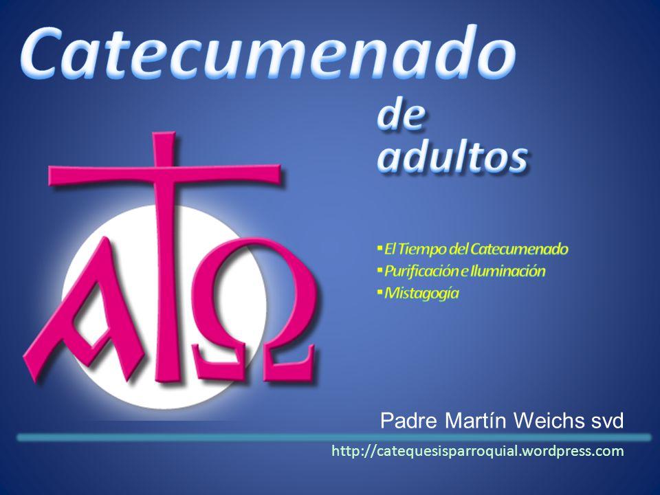 Padre Martín Weichs svd