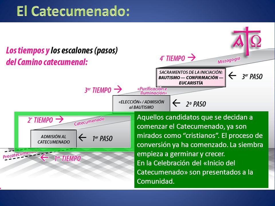 El Catecumenado: