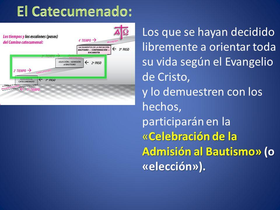 El Catecumenado: Los que se hayan decidido libremente a orientar toda su vida según el Evangelio de Cristo,