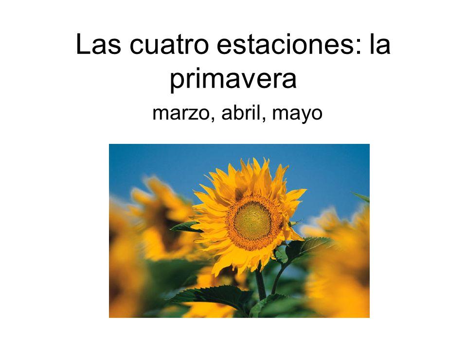 Las cuatro estaciones: la primavera