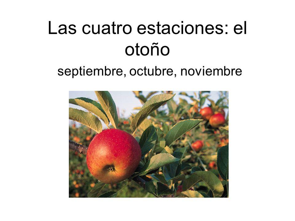 Las cuatro estaciones: el otoño
