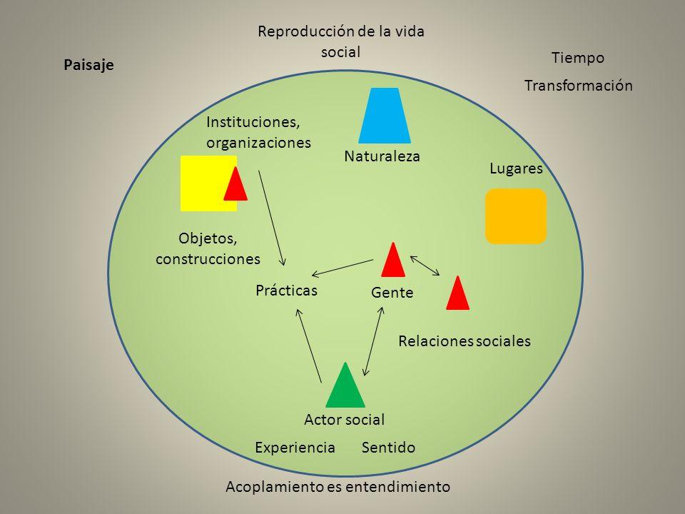 Reproducción de la vida social