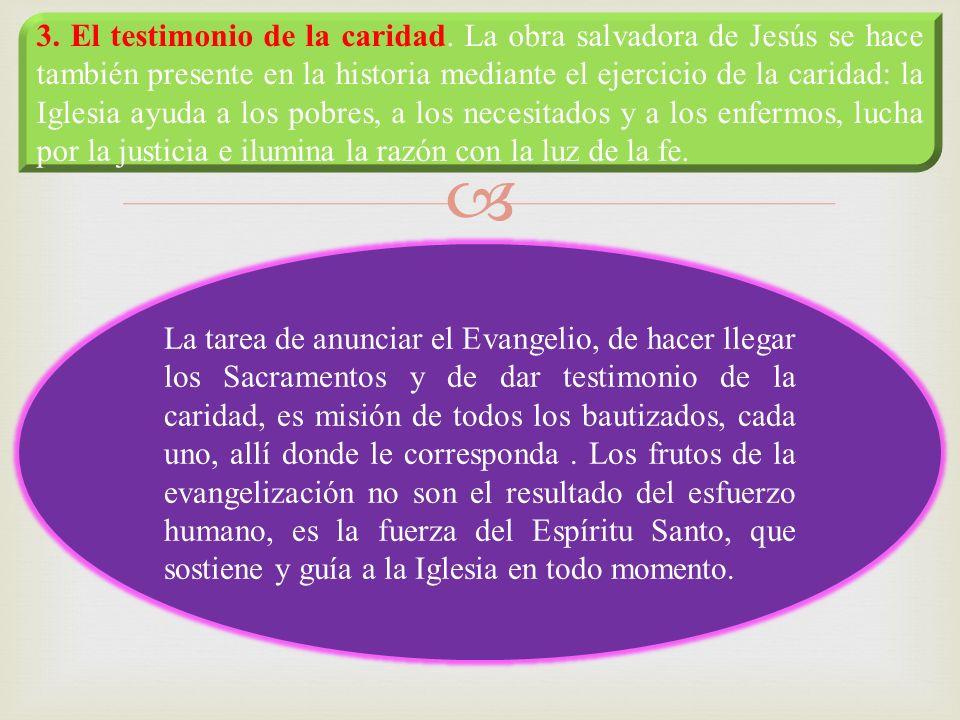 3. El testimonio de la caridad