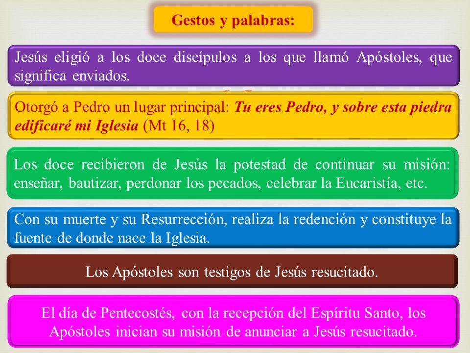 Los Apóstoles son testigos de Jesús resucitado.