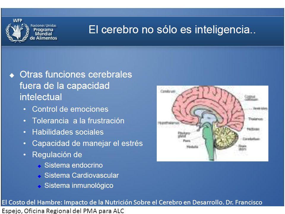 El Costo del Hambre: Impacto de la Nutrición Sobre el Cerebro en Desarrollo.