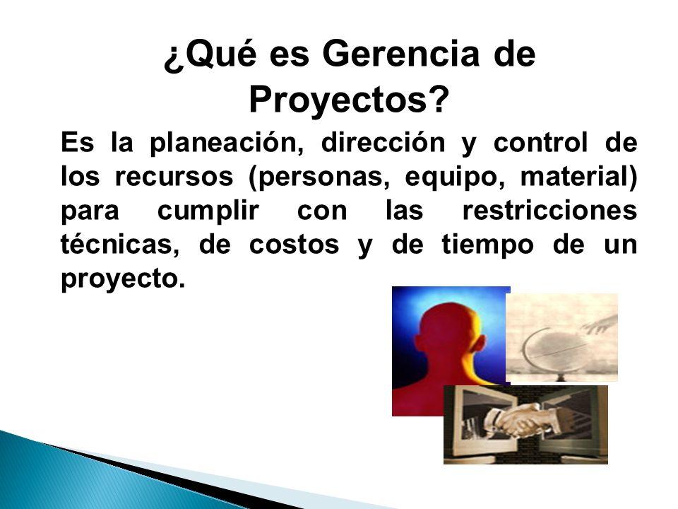 ¿Qué es Gerencia de Proyectos