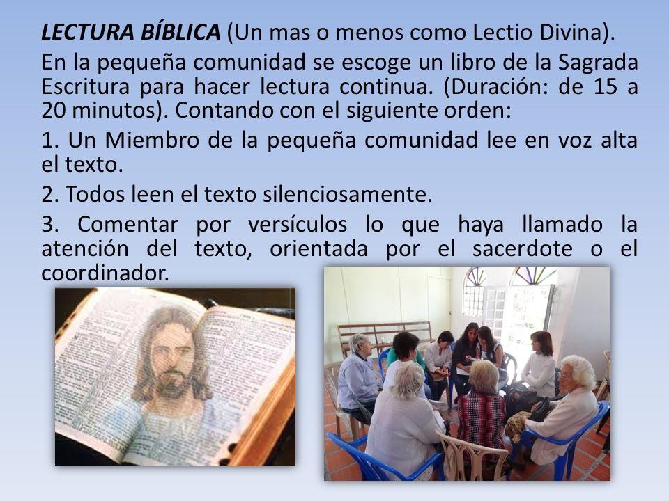 LECTURA BÍBLICA (Un mas o menos como Lectio Divina).