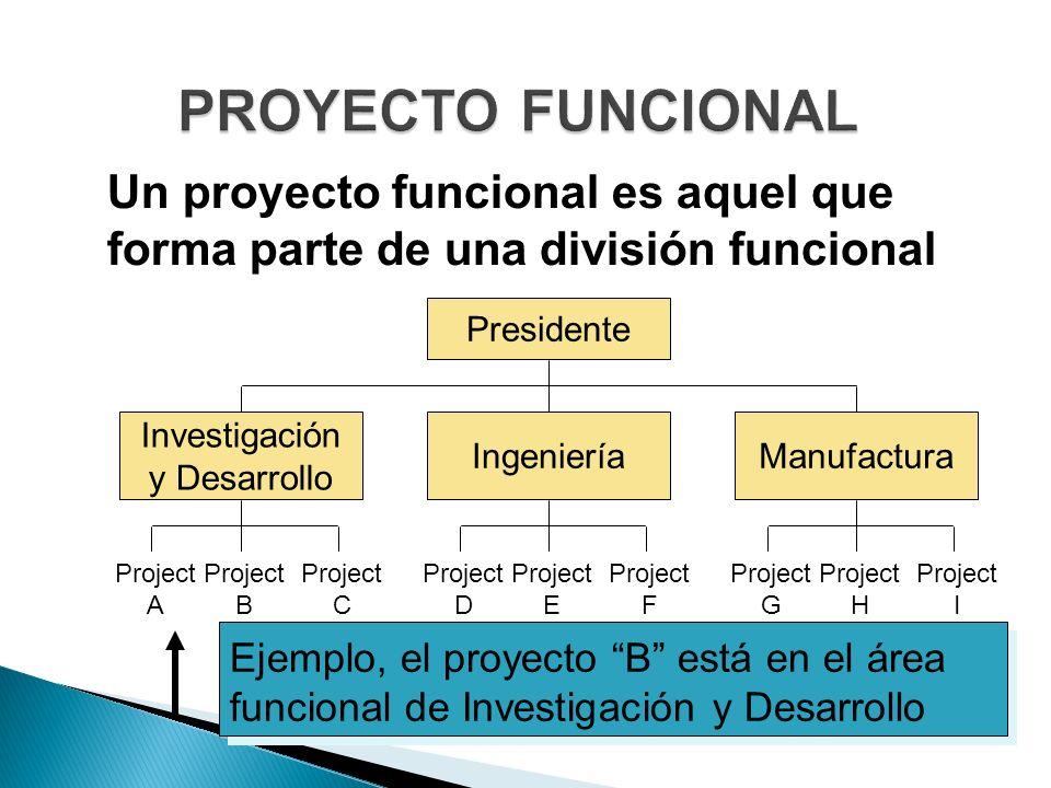 PROYECTO FUNCIONAL Un proyecto funcional es aquel que forma parte de una división funcional. Presidente.
