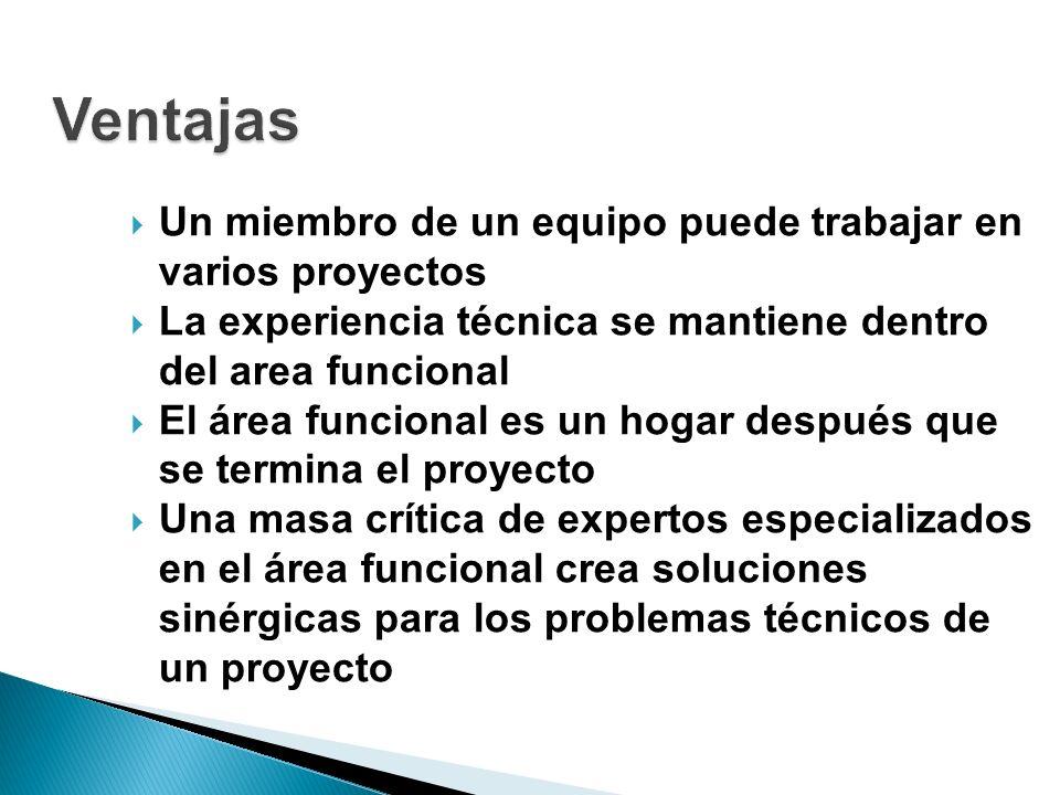 Ventajas Un miembro de un equipo puede trabajar en varios proyectos
