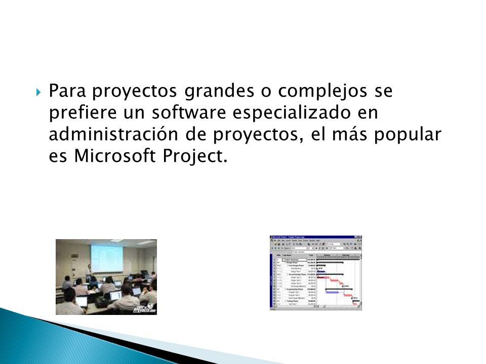 Para proyectos grandes o complejos se prefiere un software especializado en administración de proyectos, el más popular es Microsoft Project.