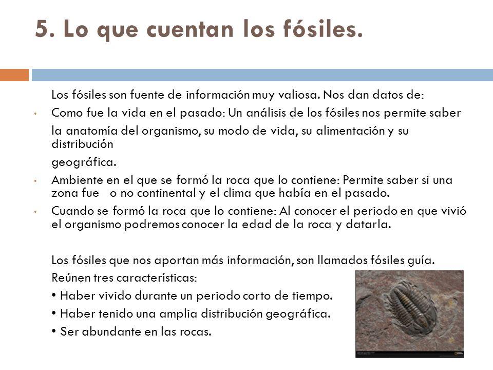 5. Lo que cuentan los fósiles.
