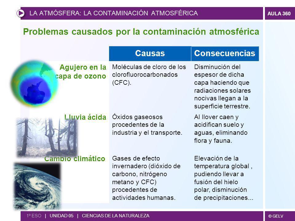 Problemas causados por la contaminación atmosférica