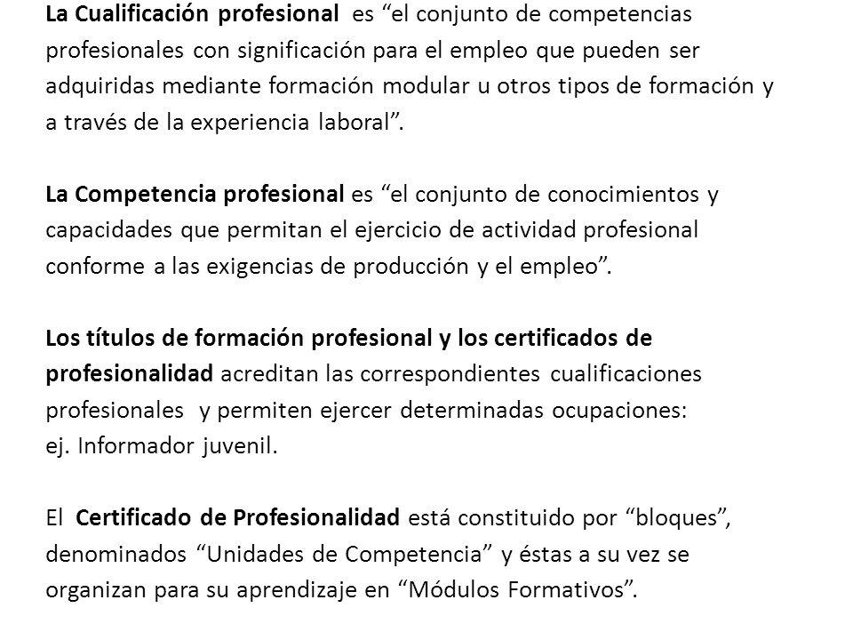 La Cualificación profesional es el conjunto de competencias profesionales con significación para el empleo que pueden ser adquiridas mediante formación modular u otros tipos de formación y a través de la experiencia laboral .