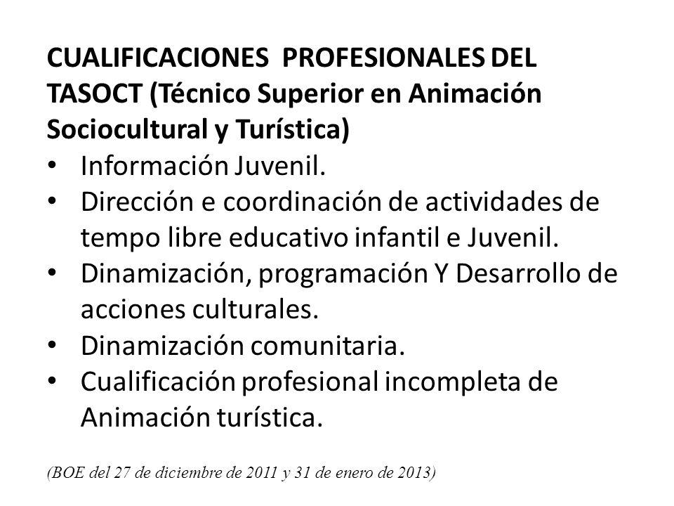 Dinamización, programación Y Desarrollo de acciones culturales.