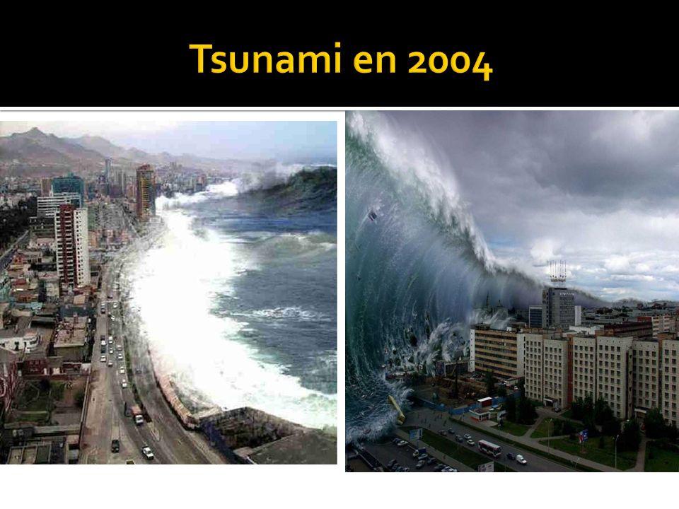 Tsunami en 2004