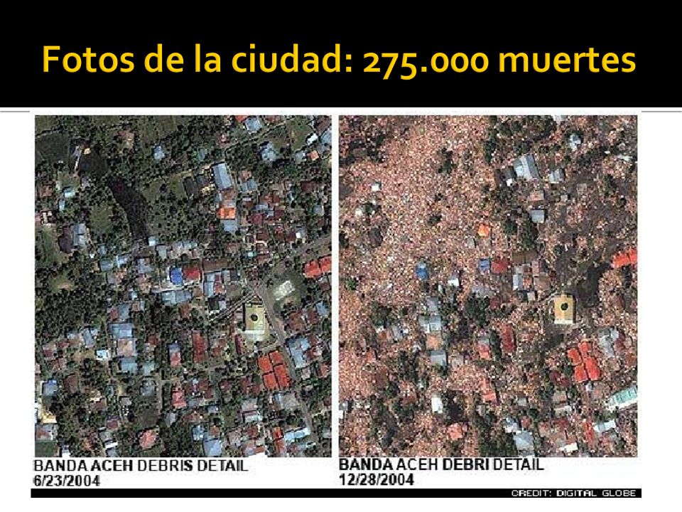 Fotos de la ciudad: 275.000 muertes