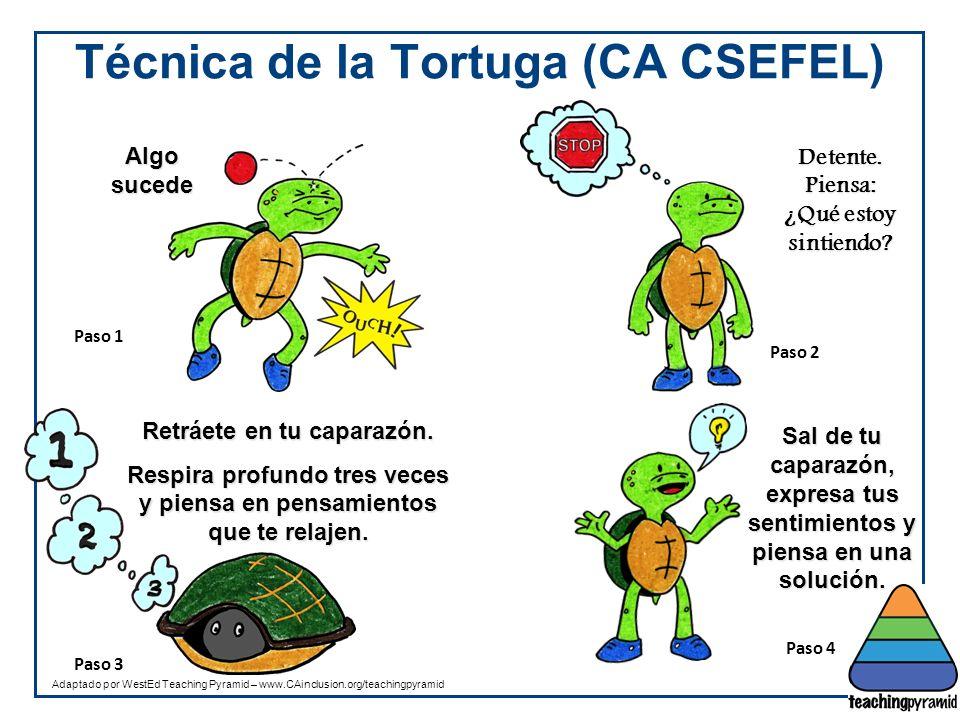Técnica de la Tortuga (CA CSEFEL)