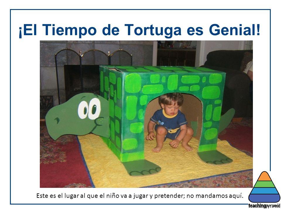 ¡El Tiempo de Tortuga es Genial!