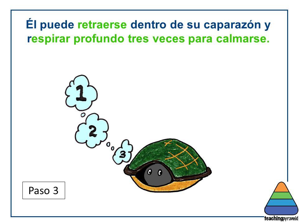 Teaching Pyramid Updated June 2012. Él puede retraerse dentro de su caparazón y respirar profundo tres veces para calmarse.
