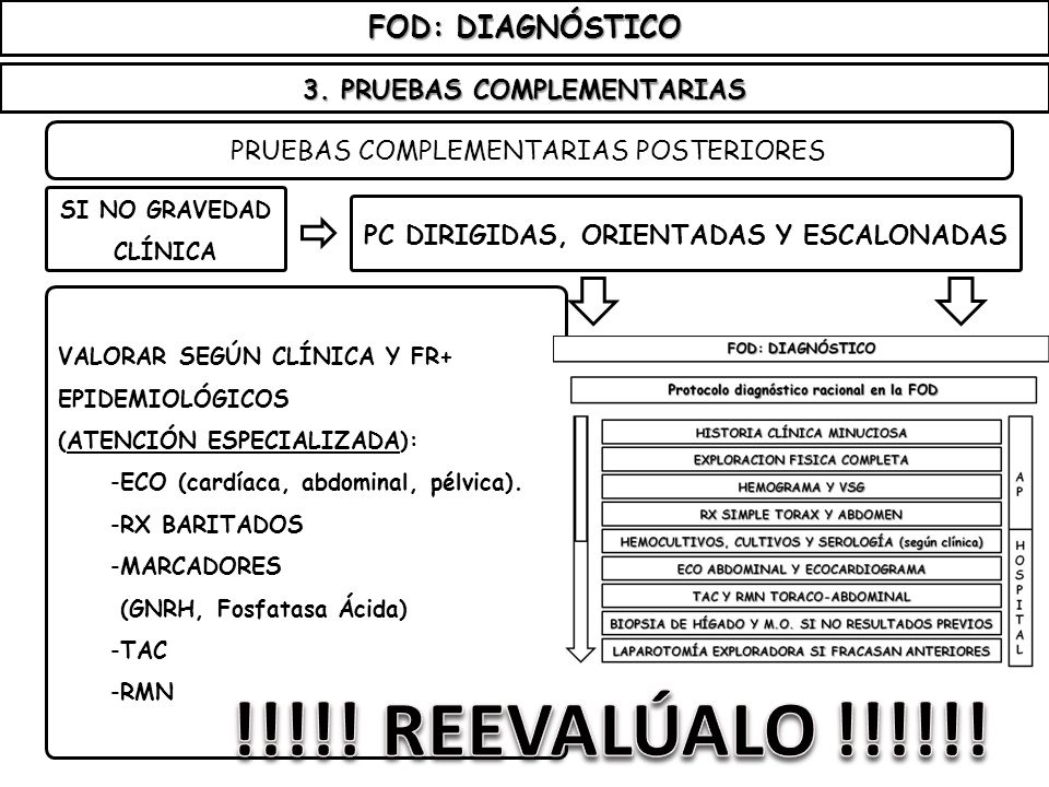 3. PRUEBAS COMPLEMENTARIAS PC DIRIGIDAS, ORIENTADAS Y ESCALONADAS