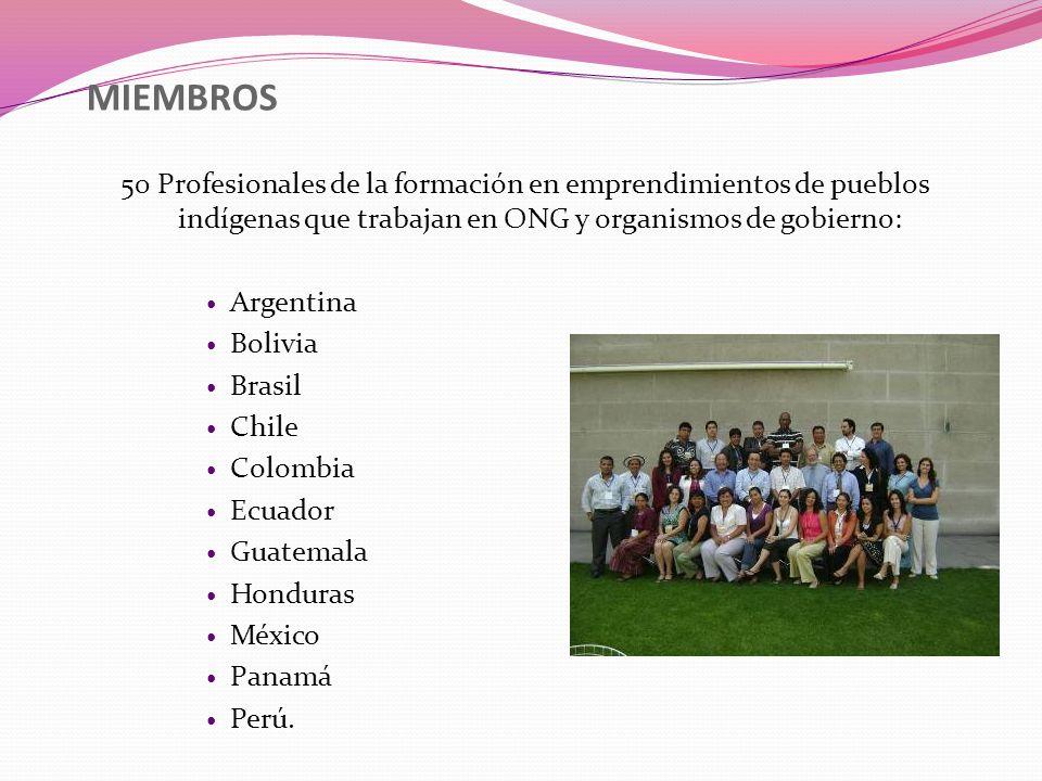 MIEMBROS 50 Profesionales de la formación en emprendimientos de pueblos indígenas que trabajan en ONG y organismos de gobierno: