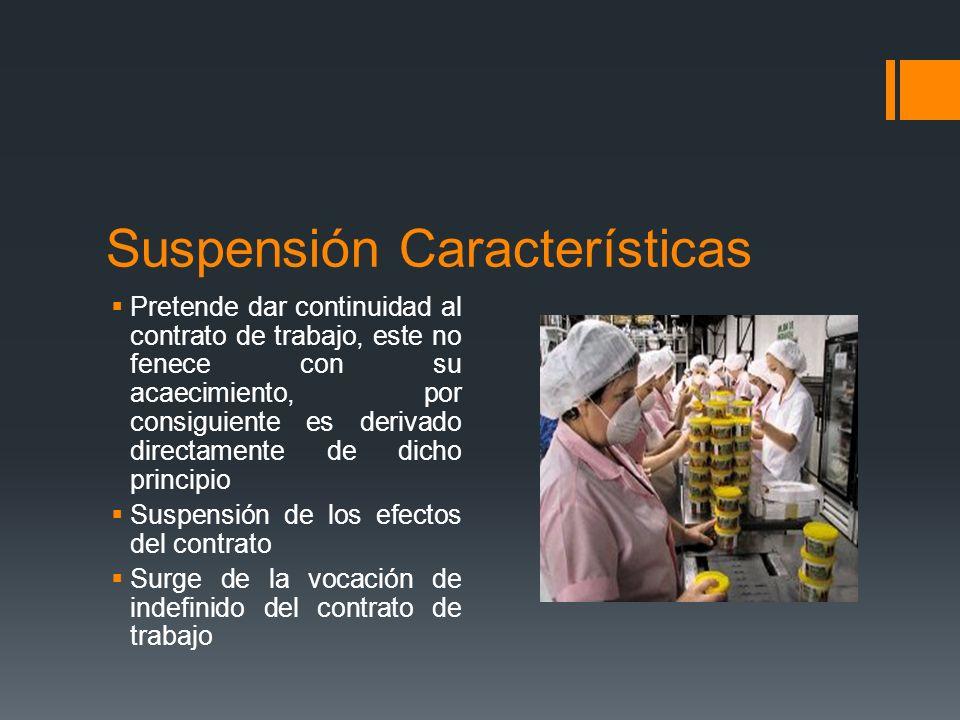 Suspensión Características