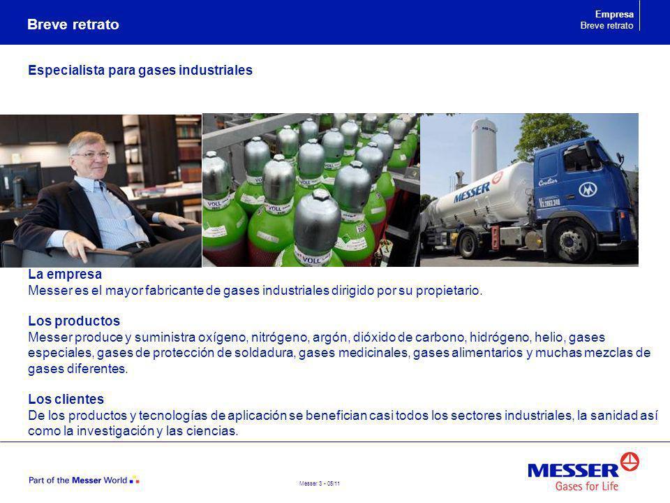 Breve retrato Especialista para gases industriales La empresa