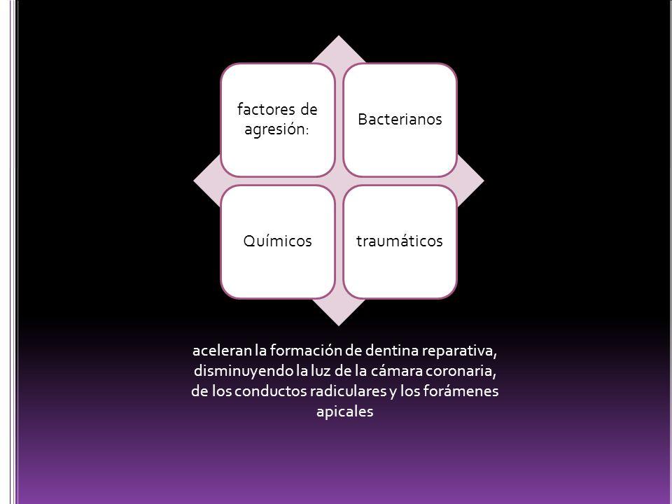 factores de agresión: Bacterianos Químicos traumáticos