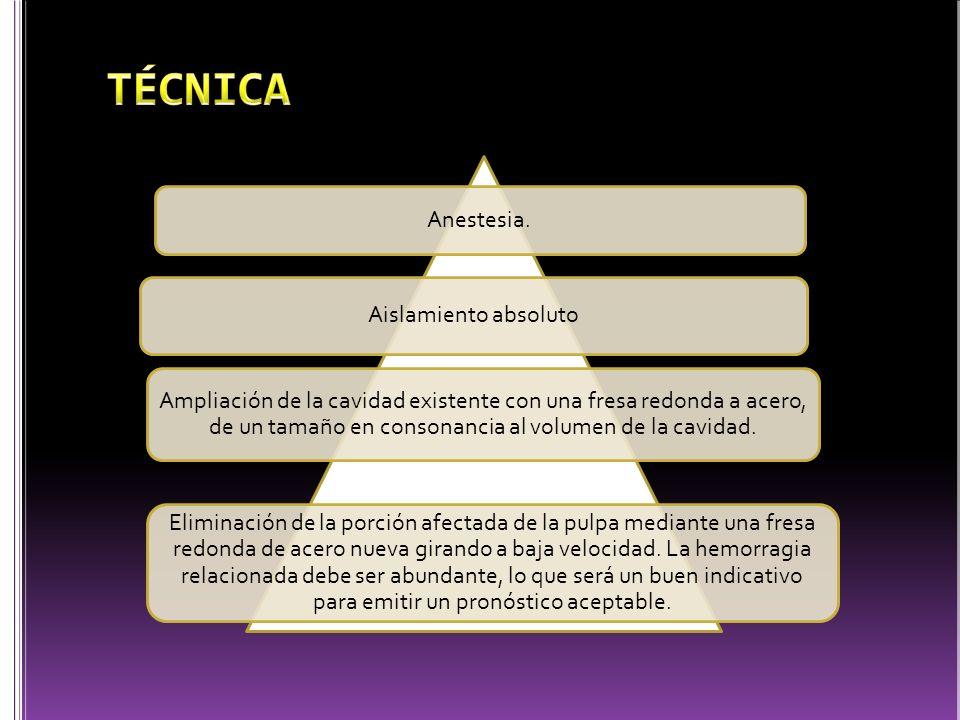 TÉCNICA Anestesia. Aislamiento absoluto