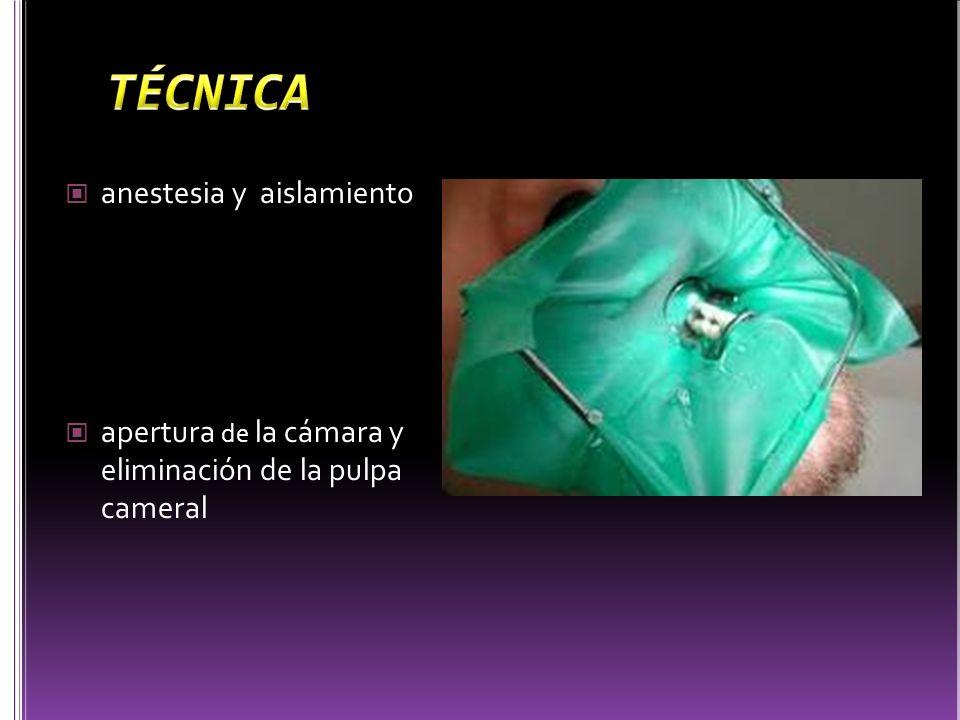 TÉCNICA anestesia y aislamiento
