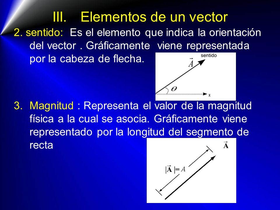 III. Elementos de un vector