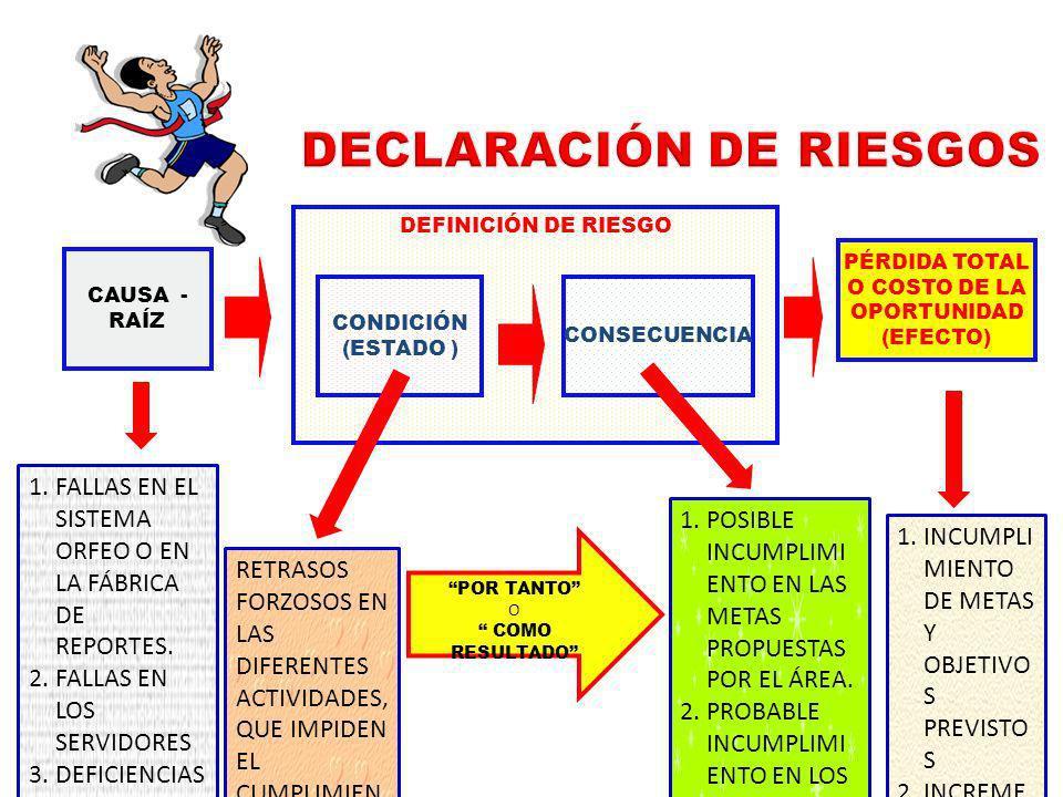 DECLARACIÓN DE RIESGOS