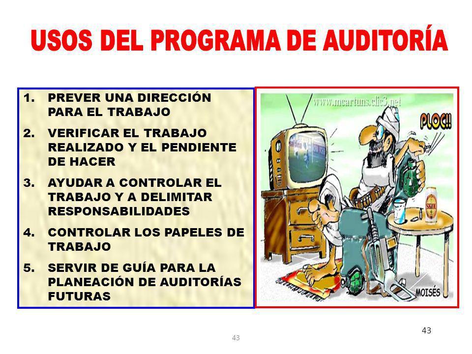 USOS DEL PROGRAMA DE AUDITORÍA
