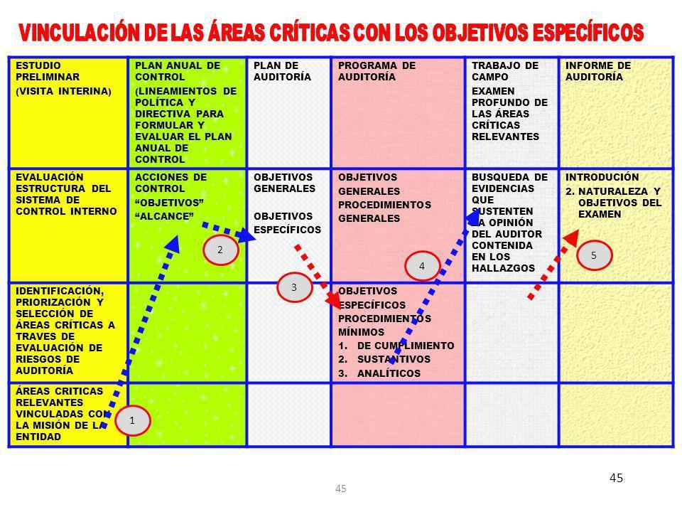 VINCULACIÓN DE LAS ÁREAS CRÍTICAS CON LOS OBJETIVOS ESPECÍFICOS