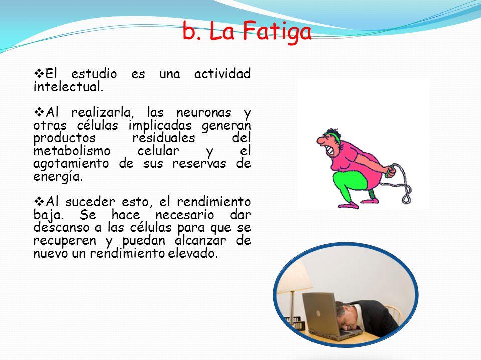 b. La Fatiga El estudio es una actividad intelectual.