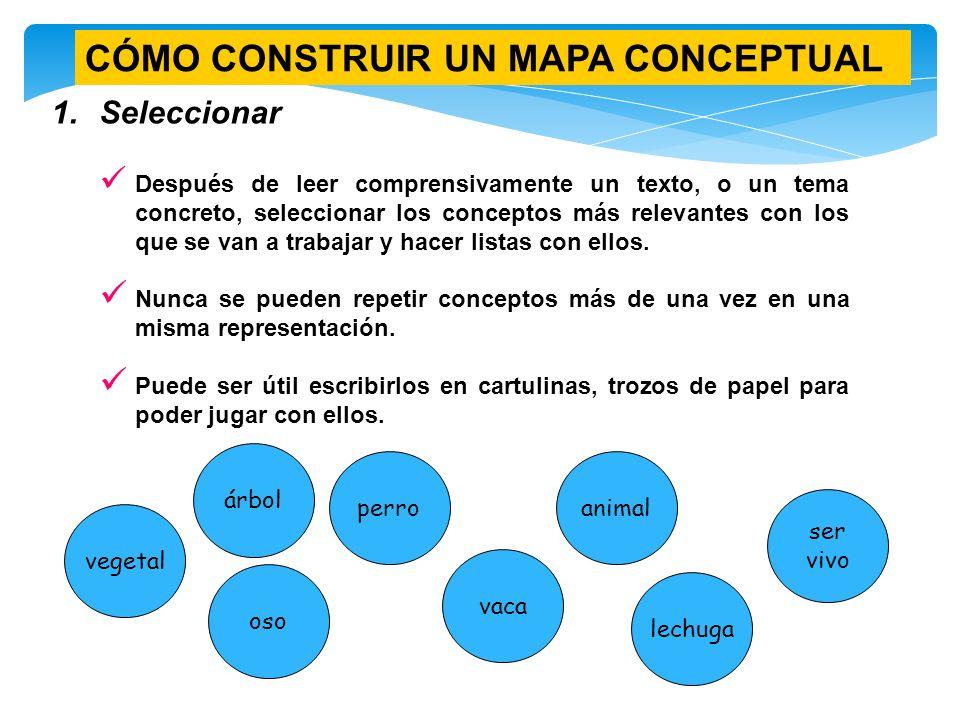 Cuadro sin ptico y mapa conceptual ppt video online for Como se construye una piscina de concreto