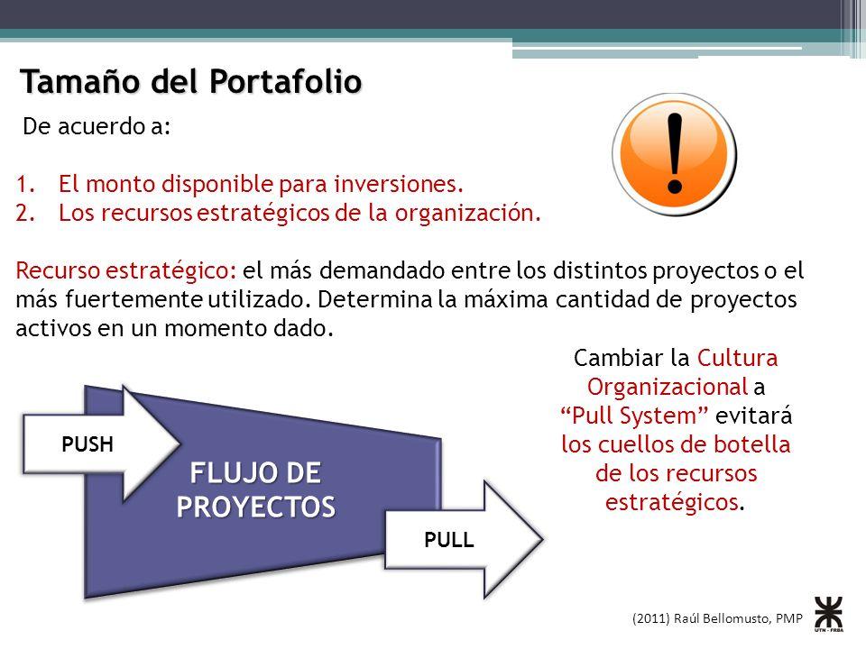 Tamaño del Portafolio FLUJO DE PROYECTOS De acuerdo a:
