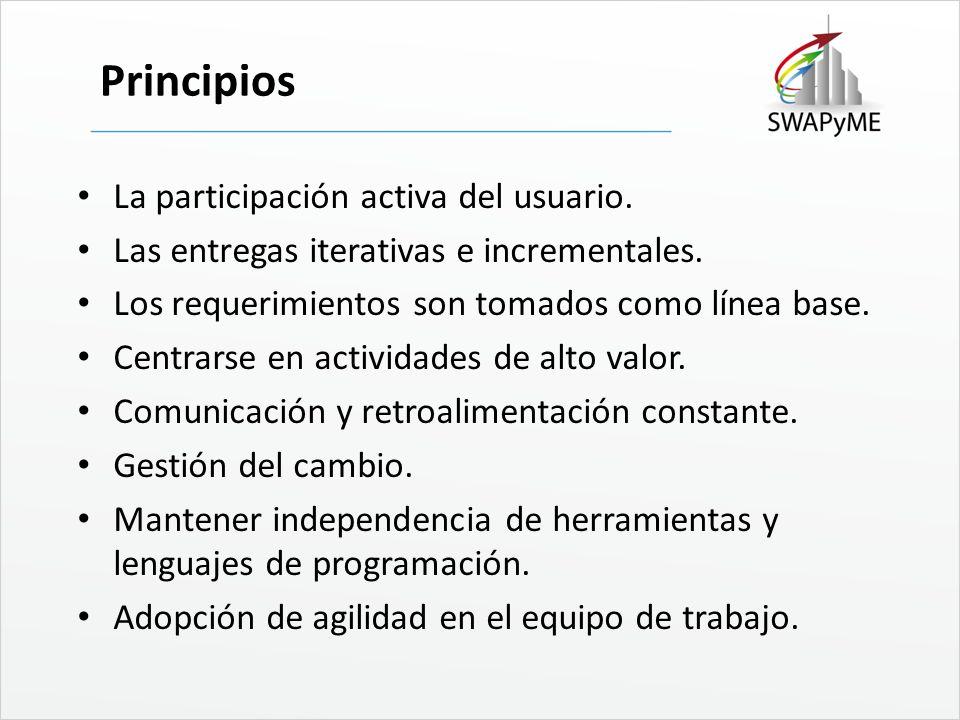 Principios La participación activa del usuario.